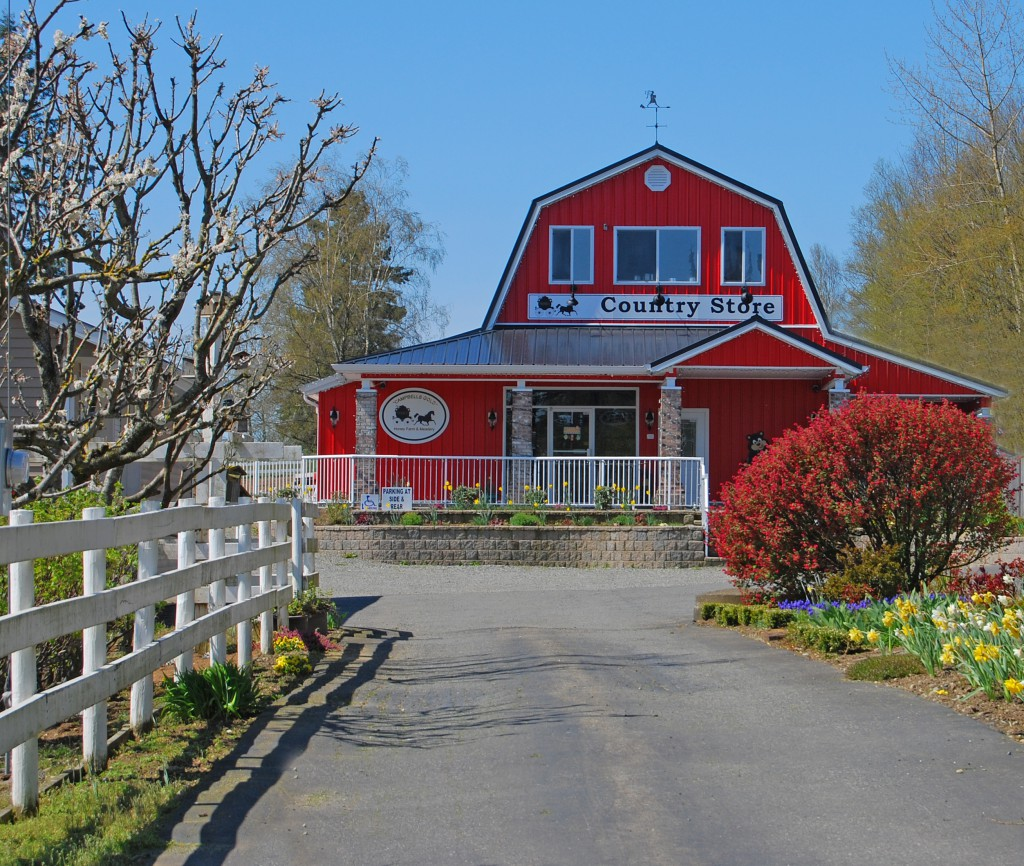 country-store-summer-1 (2)