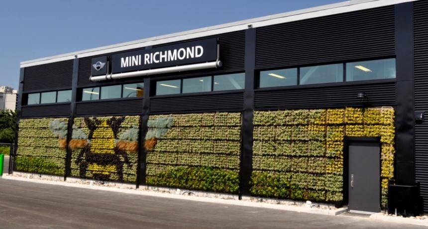 Richmond Mini dealership with wall of sedum