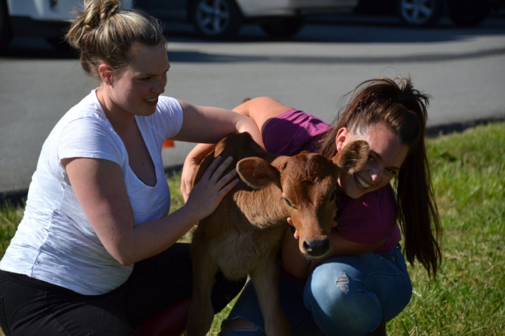 Sisters Jenna Bock and Emma Davison use milk from their uncle's Jersey cows next door.