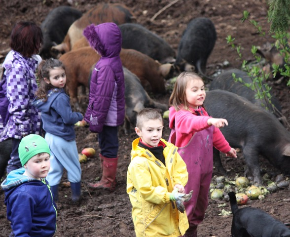 The future for Laurica Farm looks like an education center: one that farms, has fun, teaches and advocates.