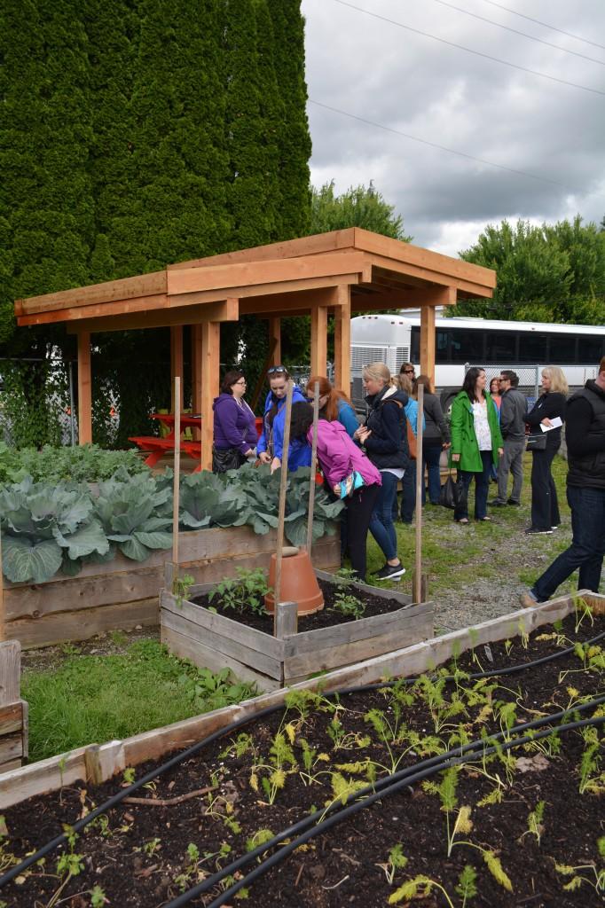 Urban gardens provide educational spaces